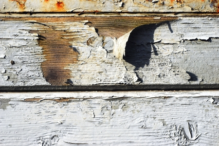 flaking white paint on wooden background photo