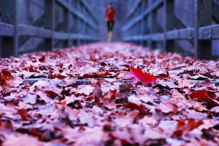 old wooden bridge covered in leaves with runner Stock Photo