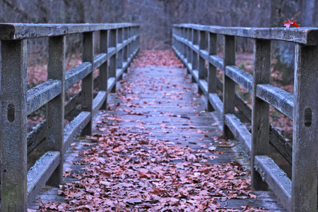 old wooden bridge covered with fallen autumn leaves