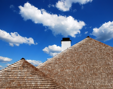detail of the roof of wooden shingles and thatch photo