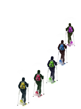 Group snowshoe colors on a white background