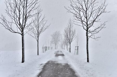 Snowstorm on the road with a car in the background Stock Photo