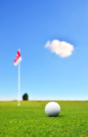 Golf ball in front of a flag on the green
