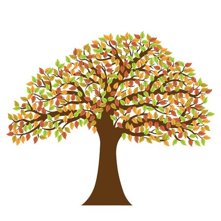 Vector image of tree with colorful autumn leaves