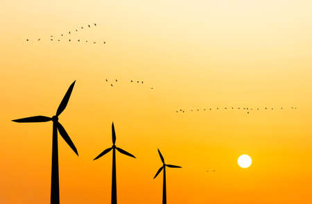 silhouettes of wind turbines on the background of the sunset and a flying flock of birds Stock Photo