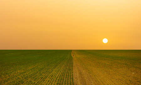 Lack of water, drought and hot sun on the horizon