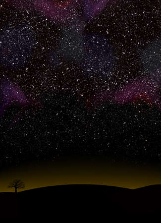 Night sky full of stars in a landscape without light noise
