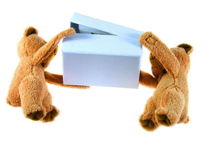 teddybears with blue box on white background