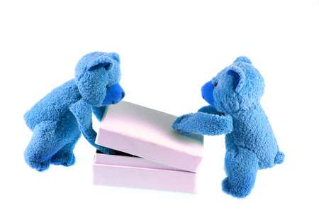 blue polar teddys opening the white box