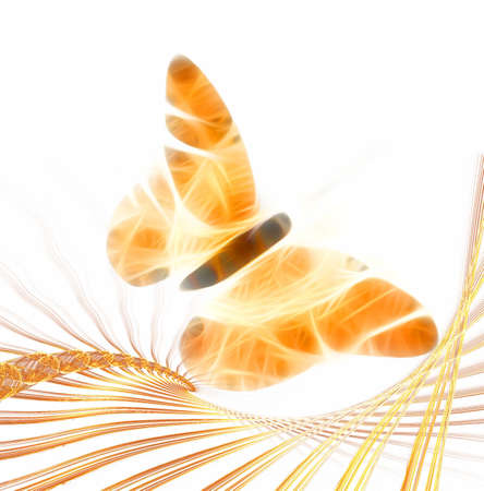 Fractal designed  butterfly illustration Stock Photo