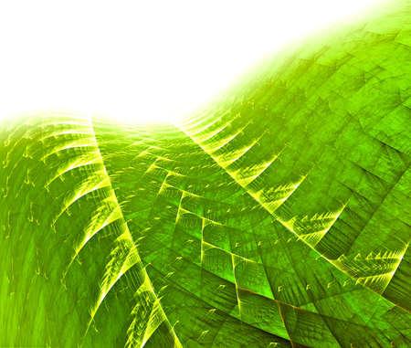 green fractal background over white