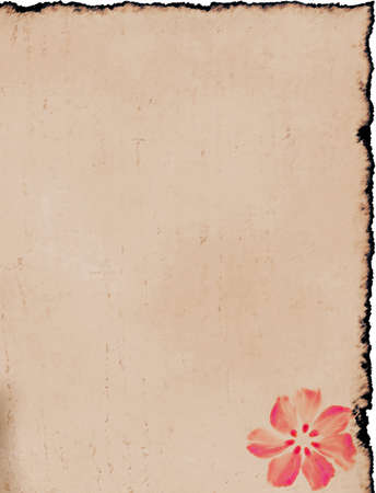 Other paper with flower. Large background with space for text or image Stock Photo - 3659392