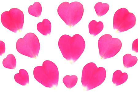 rose-petals hearts illustration Stock Photo