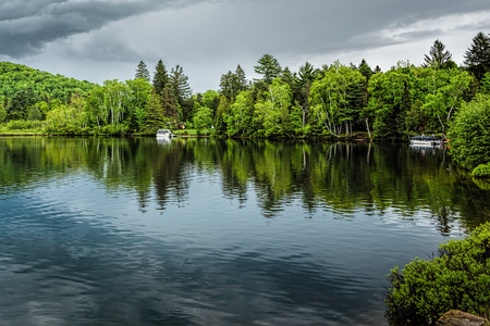 Reflections of green pine trees and a house into a calm lake under soft greyish clouds just before rain Stok Fotoğraf