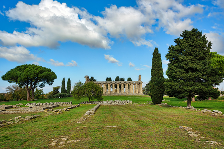 Trees under clear blue skies in an ancient city ruins Banque d'images