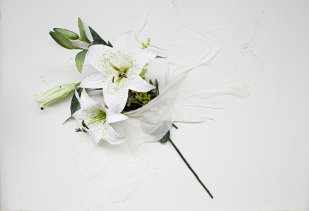 dauerhaft: Blumenstrau� aus wei�en Blumen auf Marmor Wand, Dekoration und Natur