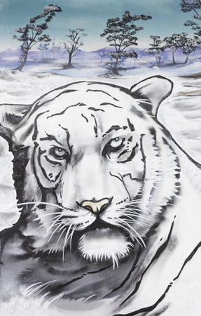 Graffiti white tiger drawn on the wall, imagination