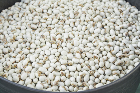Dried legumes in market supply, sale photo