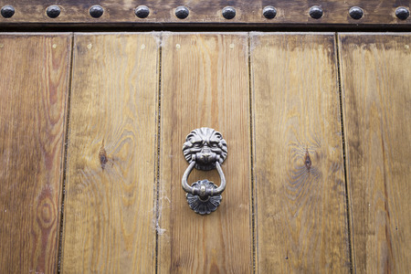 Lion iron antique wooden door, construction photo