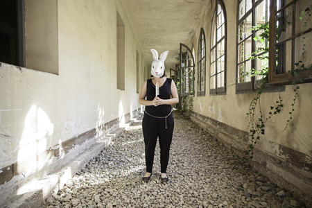 terrifying: Terrifying killer rabbit with mask, halloween