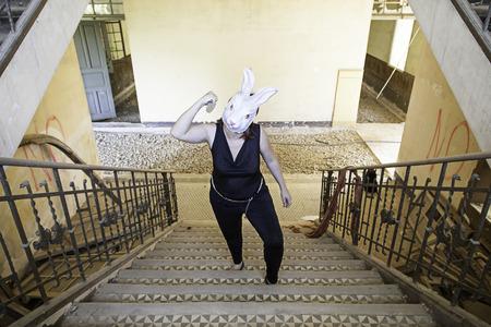 insane insanity: Stairs killer rabbit mask, halloween