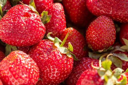 strawberry macro background close up