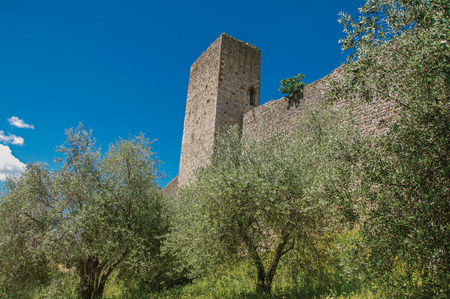 Close-up of the stone walls of the Monteriggioni hamlet, surrounded by greenery. A medieval fortress, surrounded by walls at the top of a hill near Siena. Located in the Tuscany region