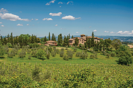 View of olive trees, vineyards and hills with villa at the top in the Tuscan countryside, an unbelievable and traditional region in the center of the Italian Peninsula. Located in the Tuscany region Stock Photo