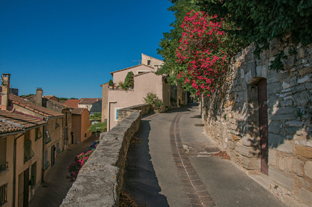View of traditional stone houses and flowers on a street at sunrise, in Chateauneuf-de-Gadagne. Located in the Vaucluse department, Provence-Alpes-C?te d'Azur region, southeastern France