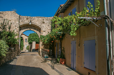 View of traditional Provence houses and arch on a street at sunrise, in Chaeauneuf-de-Gadagne. Located in the Vaucluse department, Provence-Alpes-Côte dAzur region, southeastern France