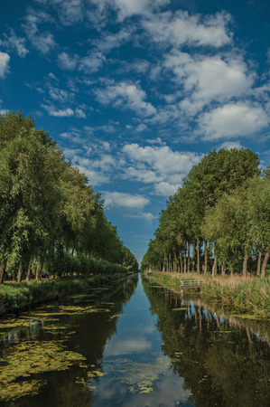Bushes and grove along canal with sky reflected on water, in late afternoon and blue sky, near Damme. A quiet and charming countryside near Bruges. Northwestern Belgium. Stock Photo