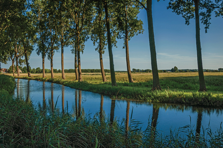 Creek in the woods next to cultivated fields at the late afternoon light in the village of Damme. A quiet and charming countryside near Bruges. Northwestern Belgium.