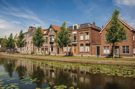 Tree-lined canal with aquatic plants and brick houses in sunny day in Weesp. Quiet and pleasant village full of canals and green near Amsterdam. Northern Netherlands.