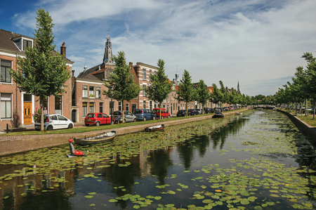 Tree-lined canal with aquatic plants, brick houses and trees in a sunny day in Weesp. Quiet and pleasant village full of canals and green near Amsterdam.