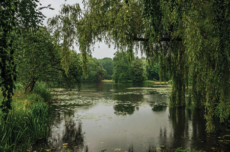 Small lake amid wooded gardens on a rainy day at De Haar Castle, near Utrecht. Of medieval origin, it underwent reforms until assuming a richly decorated Gothic style. Northern Netherlands. Stock Photo