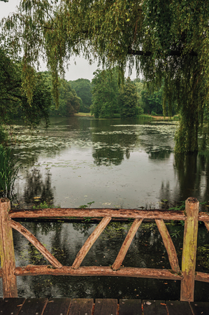 Wooden bridge amid gardens with trees on a rainy day at De Haar Castle, near Utrecht. Of medieval origin, it underwent reforms until assuming a richly decorated Gothic style. Northern Netherlands.