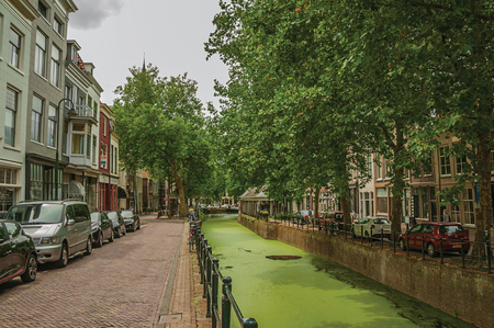 Walled canal with aquatic greenish plants, trees and buildings at Gouda. Very popular day trip destination, is famous for its tasty Gouda cheese.