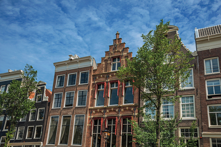 Old brick semi-detached facade with tree and sunny blue sky in Amsterdam. The city is famous for its huge cultural activity, graceful canals and bridges. Northern Netherlands.