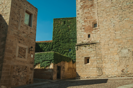 Narrow alley with old stone buildings, one of them covered by creepers on a sunny day at Caceres. A cute and charming town with a fully preserved medieval city center in western Spain. Imagens