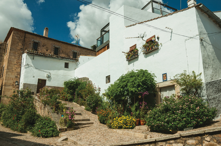 House facade with white walls, stairs, flower pots and plants in front of cobblestone alley at Caceres. A cute and charming town with a fully preserved medieval city center in western Spain. Фото со стока