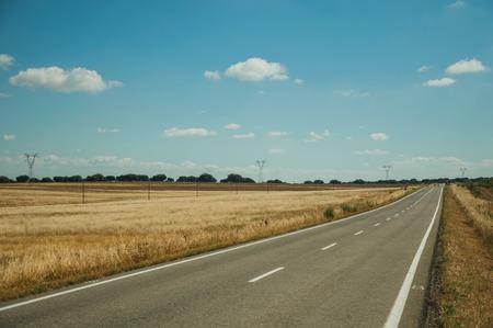Carretera recta desierta a través de un paisaje rural con campos de cultivo, en un día soleado cerca del Parque Nacional de Monfragüe. Un lugar extraordinario con hermosos acantilados y conocido por su avifauna en el oeste de España.