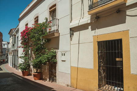 Facade of building with balcony and flowered ornamental plant in quiet street on a sunny day at Merida. Founded by ancient Rome in western Spain, the city preserves many buildings of that era. Stockfoto