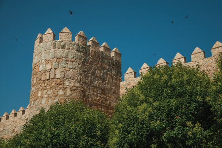 Typical merlons on top of tower on the city wall made of stone and leafy trees, in a sunny day at Avila. It has the longest and imposing wall completely encircling this well-kept gothic town in Spain. Editorial