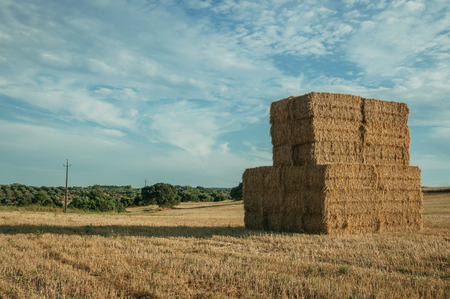 Rural landscape with hay bales piled up on a field covered by straw at sunset, in a farm near Elvas. A gracious star-shaped fortress city on the easternmost frontier of Portugal. 스톡 콘텐츠
