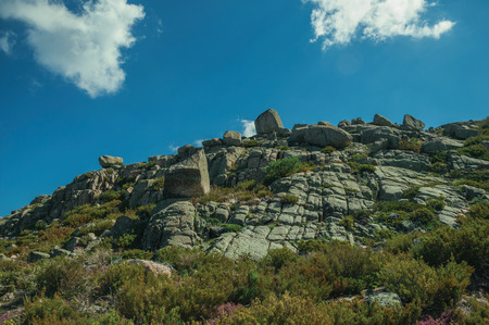 Bushes in front of quaint rock formations covered by moss and lichen on highlands, in a sunny day at the Serra da Estrela. The highest mountain range in continental Portugal, with astonishing scenery. 写真素材