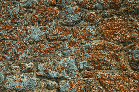 Close-up of wall made of rough stones with moss and lichens, forming a singular background in a sunny day at Monsanto. Considered one of the cutest and most peculiar historic village of Portugal. Banco de Imagens
