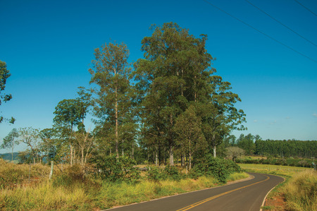 Pardinho, Brazil - Countryside paved road on hilly landscape covered by meadows and trees, in a sunny day near Pardinho. A small rural village in the countryside of Sao Paulo State.