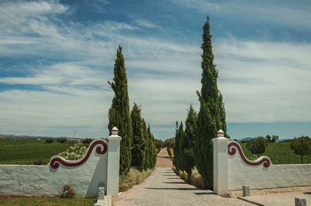 Charming decorated gateway and wall made in masonry with path encircled by poplars, in vineyard near Estremoz. A nice little historic town with several buildings made of marble on eastern Portugal. Archivio Fotografico