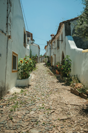 Lovely facade of old whitewashed houses and flowered pots in front of cobblestone alley at Castelo de Vide. Nice little town with medieval castle to ensure the defense of the Portugal eastern border. 写真素材