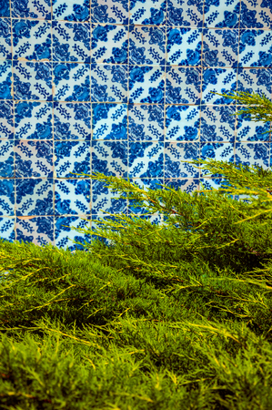 Blue floral pattern on ceramic tiles in baroque style in front of green pine branches at Gouveia. A nice country town with gardens and captivating historical heritage in Portugal. Retouched photo.